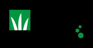 DLF logo 2015 colour